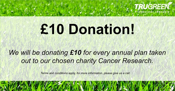 cancer research offer