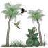 Tropical Rainforest Collection