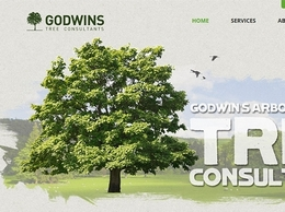 https://www.godwins.co.uk/ website