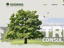 https://www.godwins.co.uk/ website