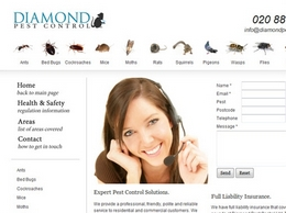 https://diamondpestcontrol.co.uk website
