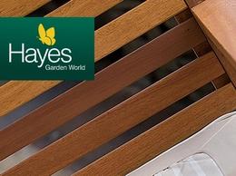 https://www.hayesgardenworld.co.uk/category/garden/barbecues-bbqs website