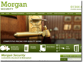 http://www.morgansecurity.co.uk/ website
