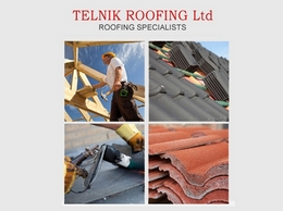 https://www.telnikroofing.co.uk/ website