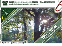 http://www.wychwoodforestry.co.uk website
