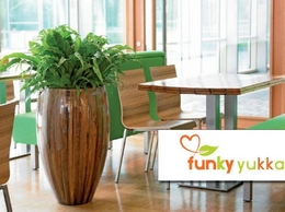 http://www.funkyyukka.co.uk website