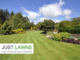 http://www.justlawns.co.uk website
