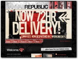https://www.canvasrepublic.com/ website