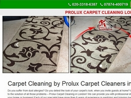 http://www.proluxcleaning.co.uk/ website
