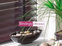 https://www.blindinglyobvious.co.uk/ website