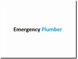 http://www.emergencyplumberealing.com website