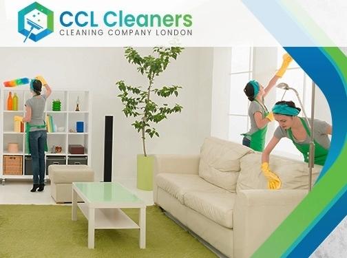 https://www.cleancompanylondon.co.uk/ website