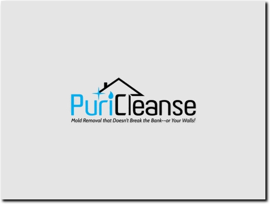 https://puricleanse.com/ website