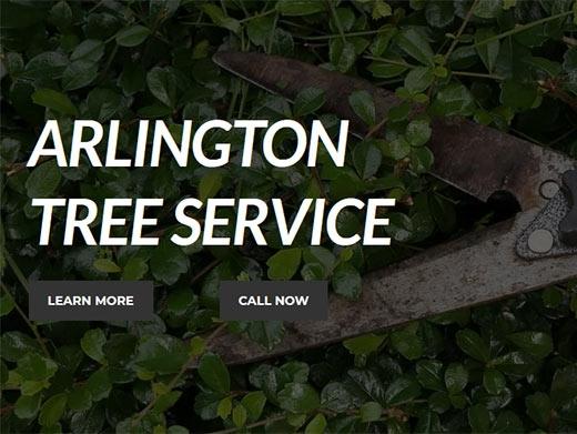 http://www.arlingtontreeservices.com/ website