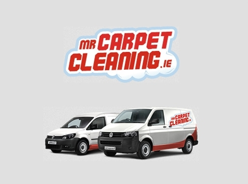 http://www.mrcarpetcleaning.ie website
