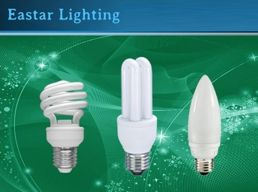 http://www.eslightbulbs.com website