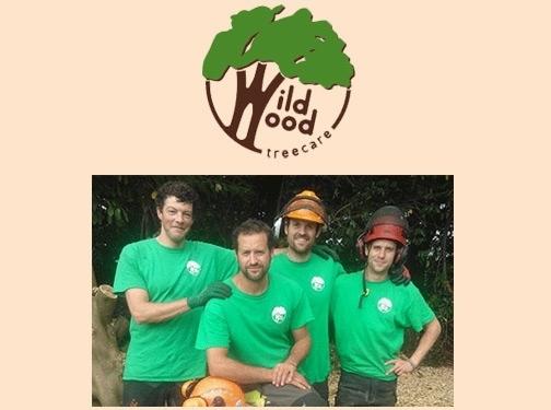 https://www.wildwoodtreecare.co.uk/ website