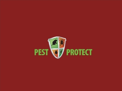 https://pest-protect.co.uk/ website