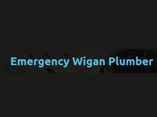 https://www.wiganplumbers247.co.uk/ website