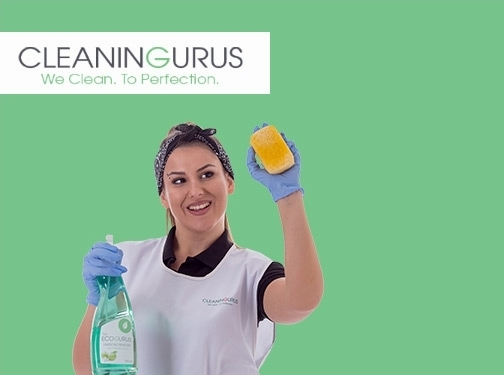 https://www.thecleaninggurus.co.uk/ website